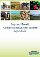 Beyond Brexit - Policy Framework