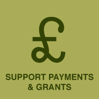 Support Payments & Grants